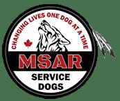 MSAR Logo Final