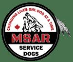 MSAR Logo Final 2x150