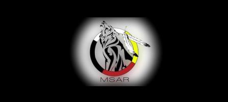 MSAR TRAINING